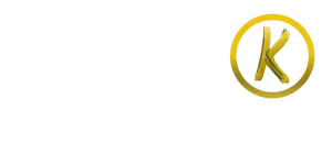 Yellow K Record Store